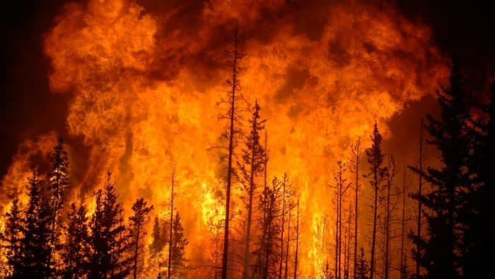 Extreme summer heat triggers wildfires.