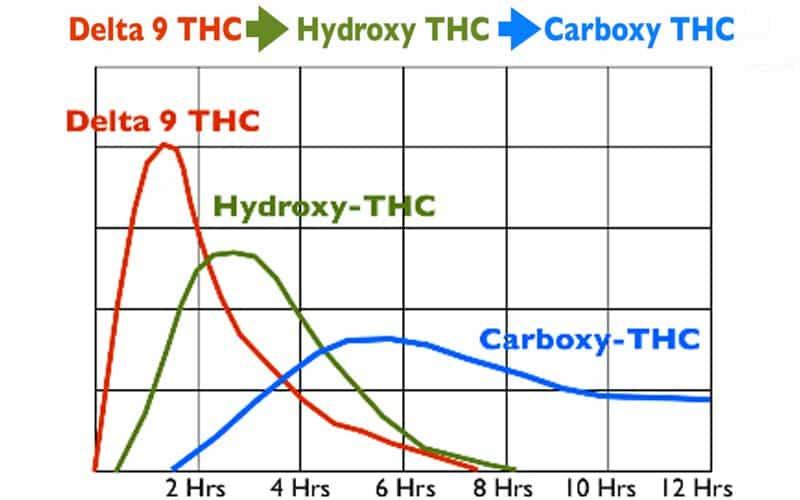 THC conversion chart.
