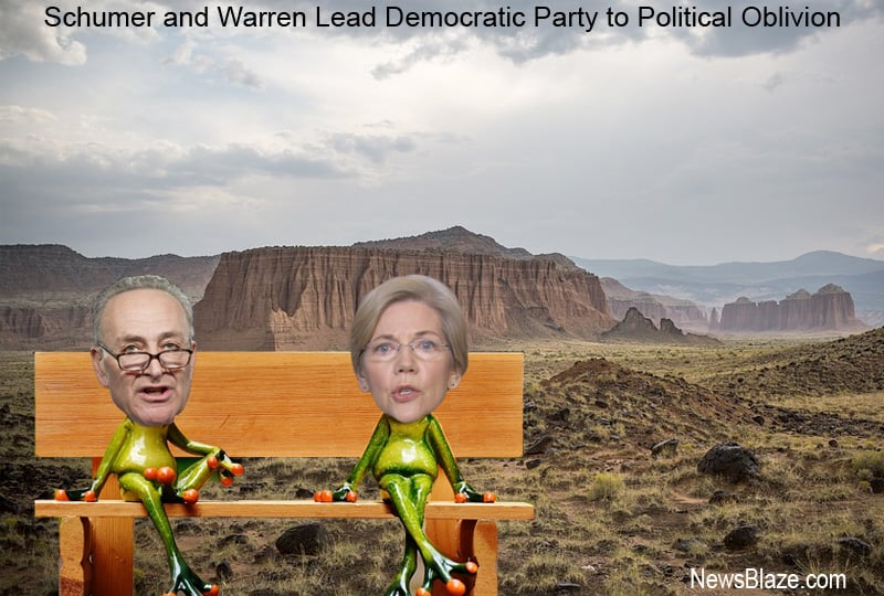 schumer and warren lead democratic party to political oblivion.
