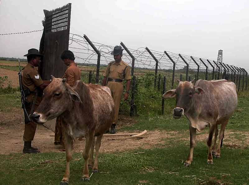 bsfi soldiers check farmer id.