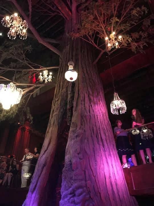 Clifton's tree theme.