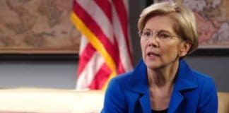 elizabeth warren in 2020?