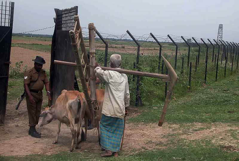 soldier checks cattle and farmer at no mans land entry.