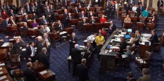 mccain kills obamacare repeal.