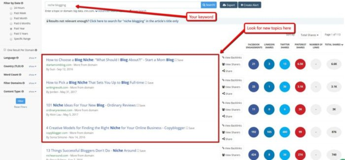 buzzsumo 700x325 - 7 Ways to Build a Successful Online Course Business