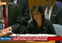 nikki haley at security council.
