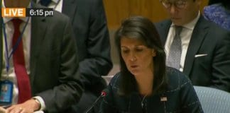 nikki haley at security council.