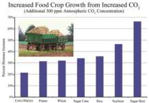 increased food crop growth.