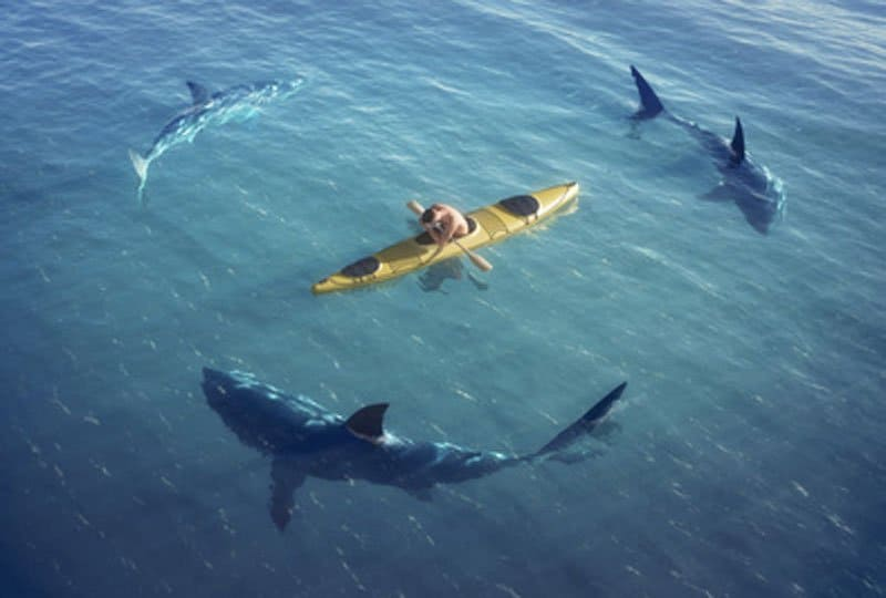 sharks circling - like negotiation mistakes.