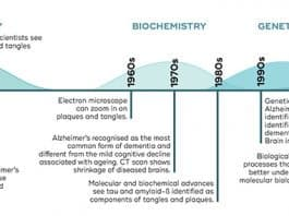 alzheimers research history timeline.