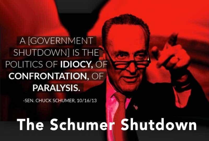 government shutdown - the schumer shutdown