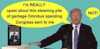 trump tricks dems on omnibus.