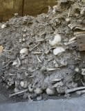 Guba Skeletons from a mass grave found