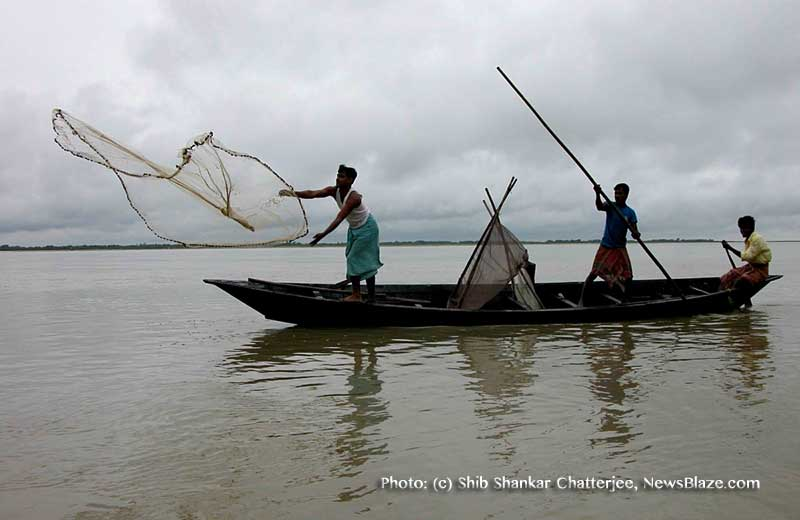 Farewell to Fishes Like Boroli: Fish Lovers of India, Bangladesh Feel Sorrow 1