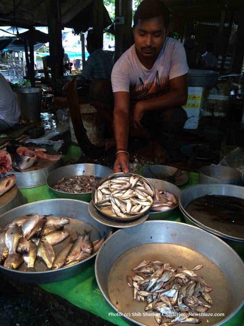 dilip haldar offers boroli fish