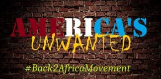 Back 2 Africa Movement