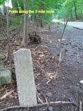 Original concrete posts