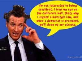 gavin newsom hairstyle law