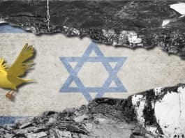 Israel Canary in Coal Mine