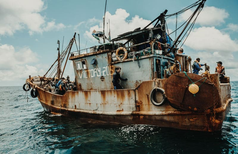 Sea Shepherd Patrols Waters Off The Gambia - Two Fishing Trawlers Arrested 17