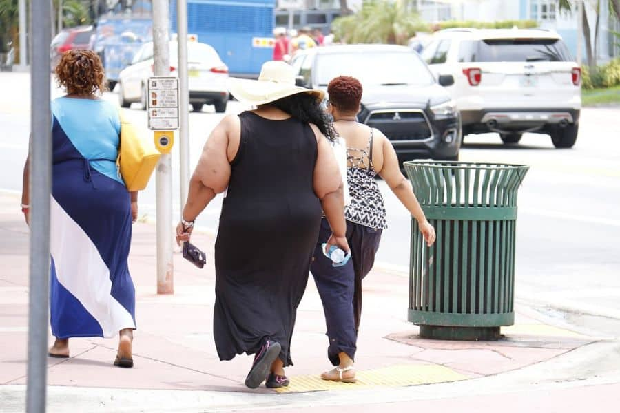 obesity fat shamed