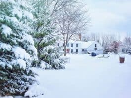 Snow covered house and trees. Photo by Jill Wellington from Pexels.