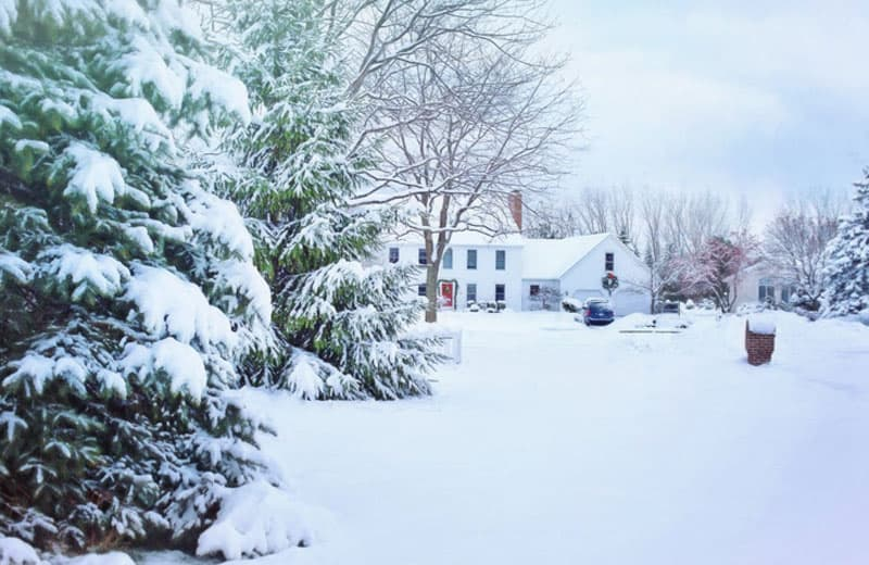 Snow covered home and trees. Photo by Jill Wellington from Pexels.