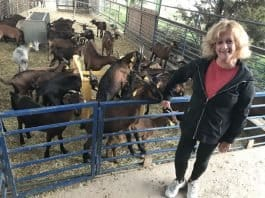 The writer with the farm's goats - Photo credit Nurit Greenger