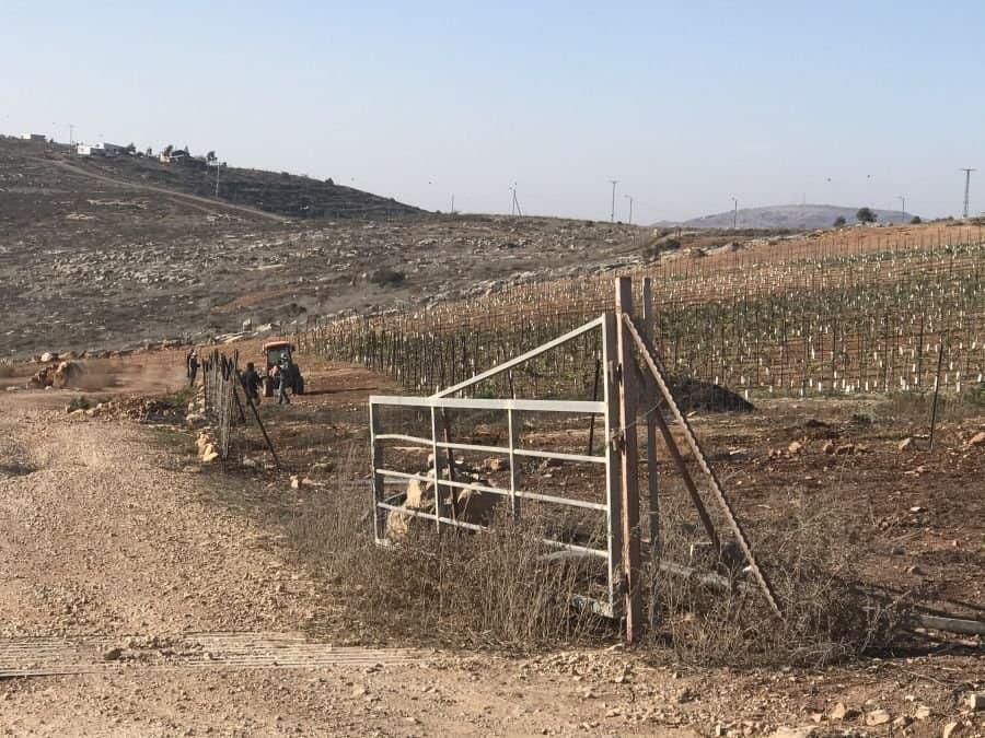 Farming the Shomron Region Summits at Giv'ot Olam 7