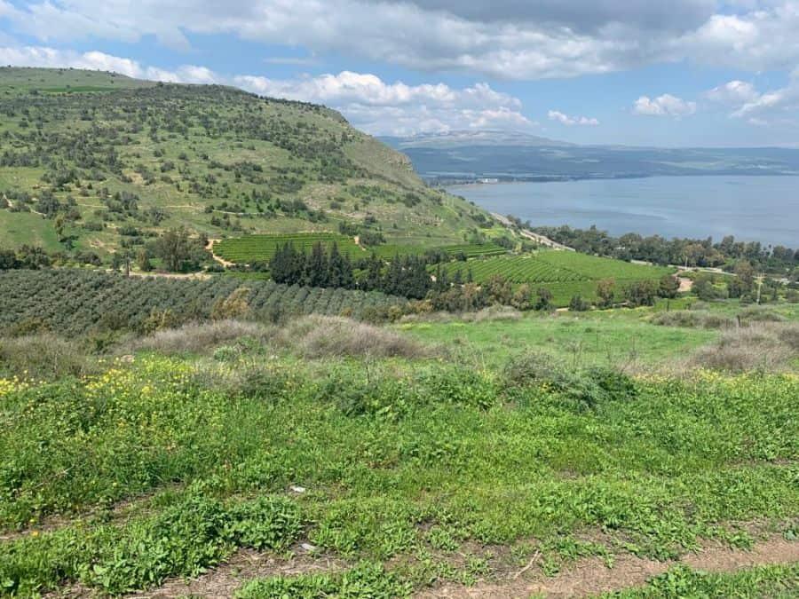 Nature's Charm Lake Kinneret, Jordan Valley North 1