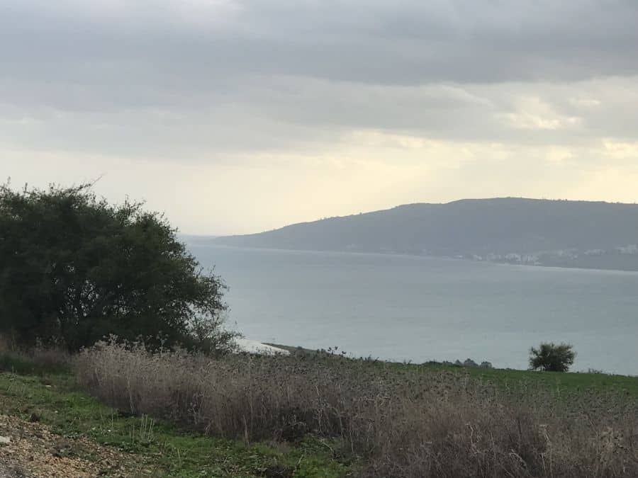 Nature's Charm Lake Kinneret, Jordan Valley North 5