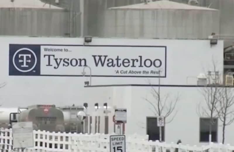 Tyson Waterloo. Youtube