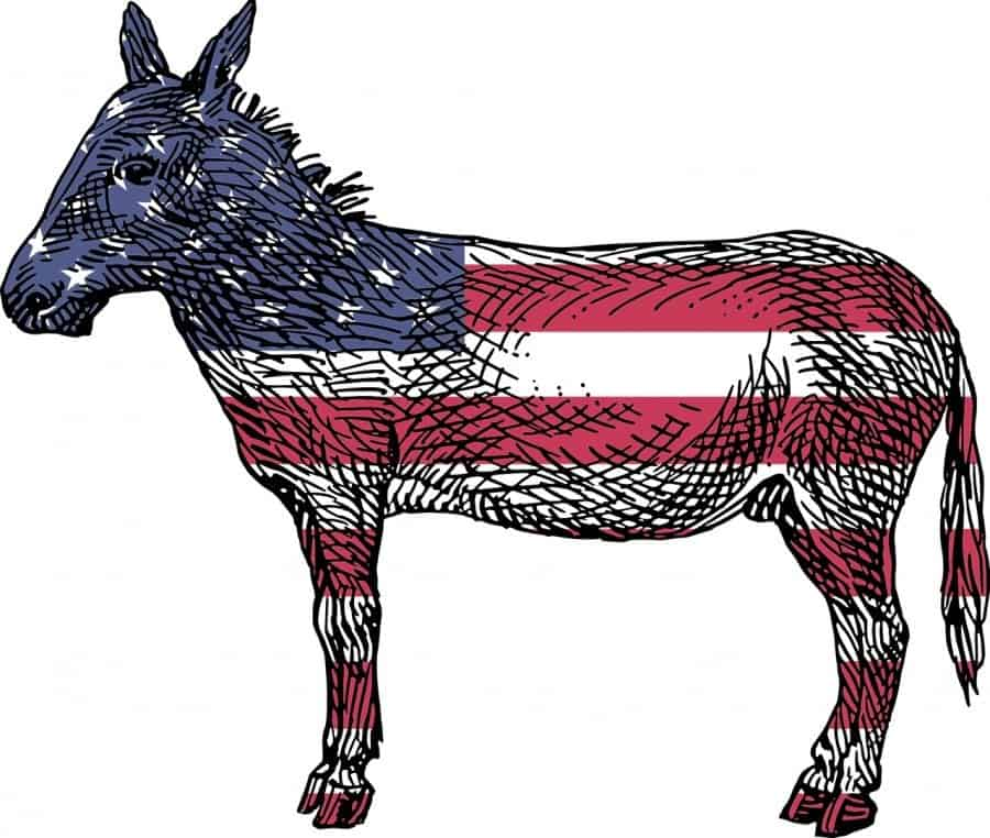 the democrat ass. Image by OpenClipart-Vectors, pixabay