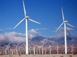 save the environment wind turbines. Image by PublicDomainImages from Pixabay