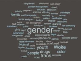transgender terms push transgender agenda. cloud c/o worditout.com